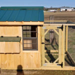 Small Chicken Coop 1 (1)