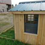 Small Chicken Coop 2 (1)