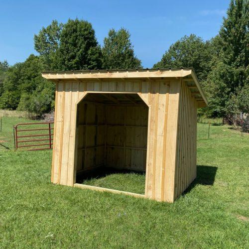 Animal-Shelter-7 (1)